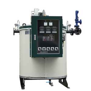 Gas Thermal Oil Boiler - DF-15G